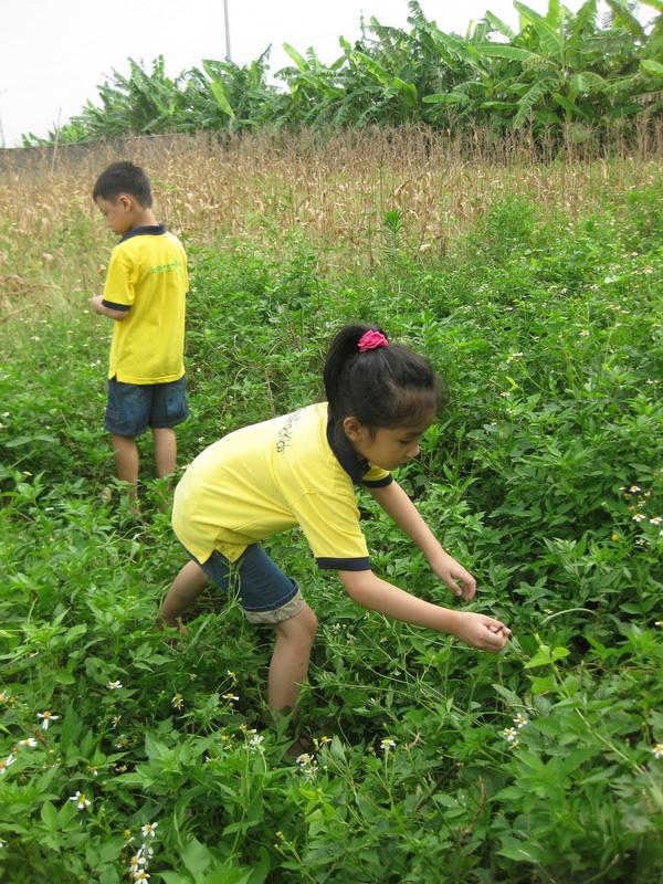 Trí tò mò - Động lực cho sự phát triển của trẻ nhỏ