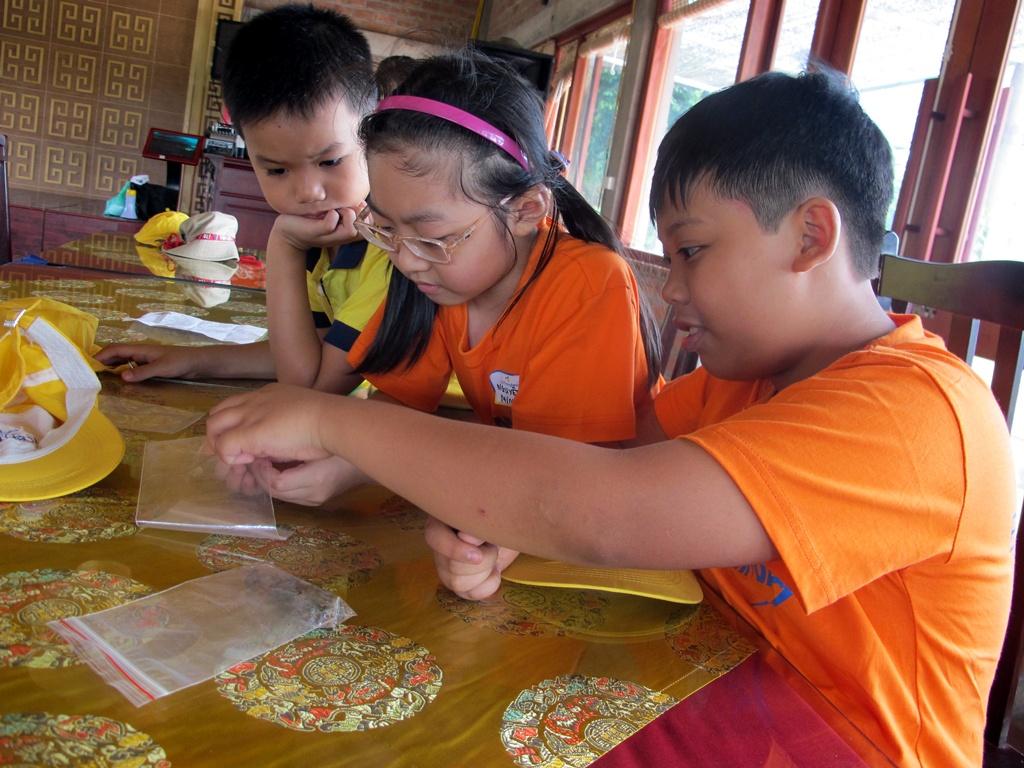 trại hè bán trú phát triển trí thông minh đa dạng
